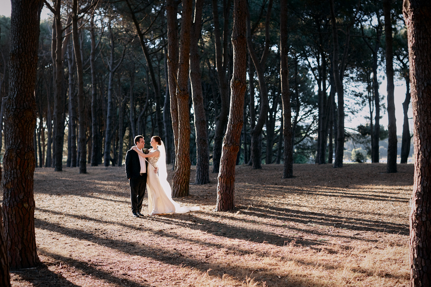 Bride with arms around groom in Pine Grove Woodlands Centennial Park Sydney