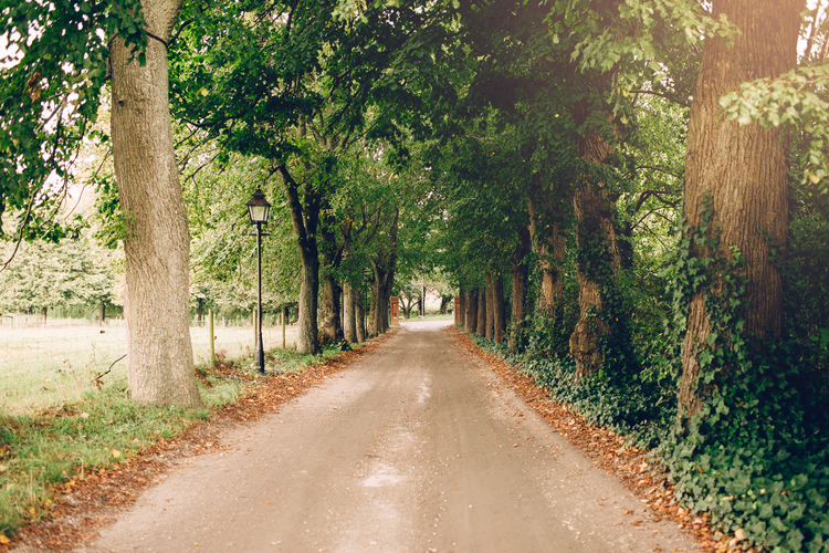 Escape to Rural Sweden by The Blonde Vagabond.jpg