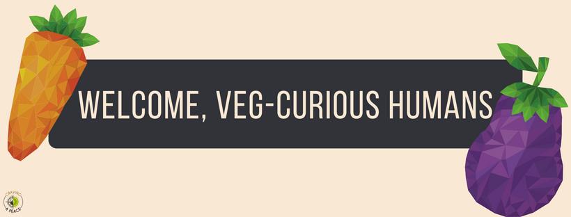 Veg-Curious Banner.png