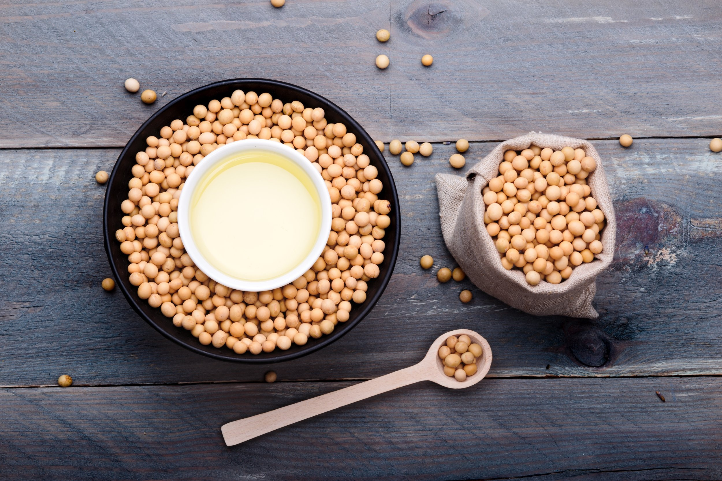 soy-beans-and-soy-oil-in-bowls-on-wooden-table_t20_NQajrB.jpg