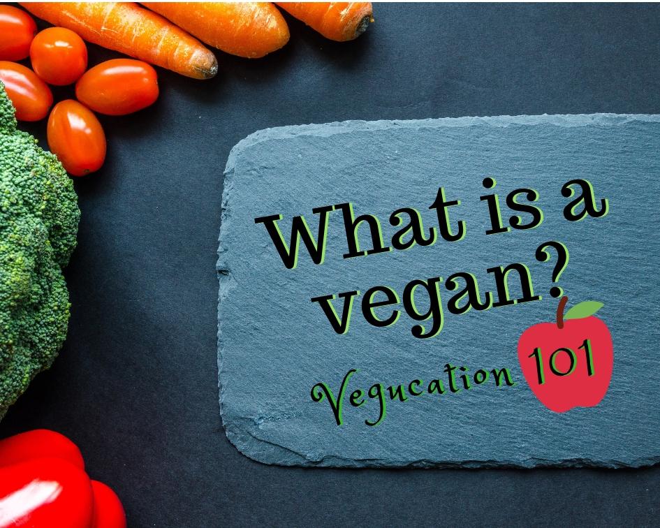what is vegan.jpg