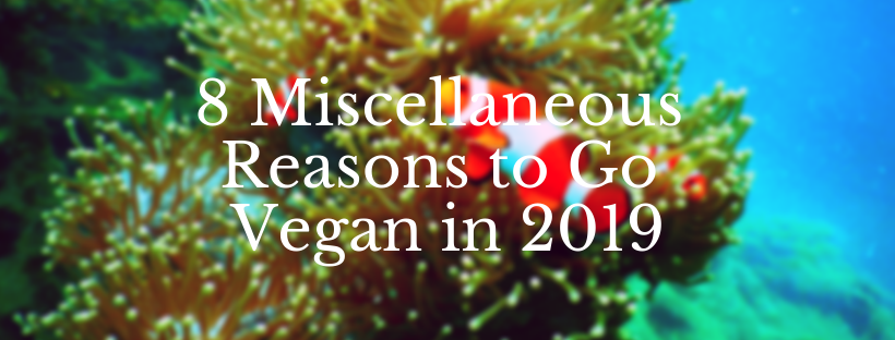 Misc Reasons to Go Vegan in 2019.png