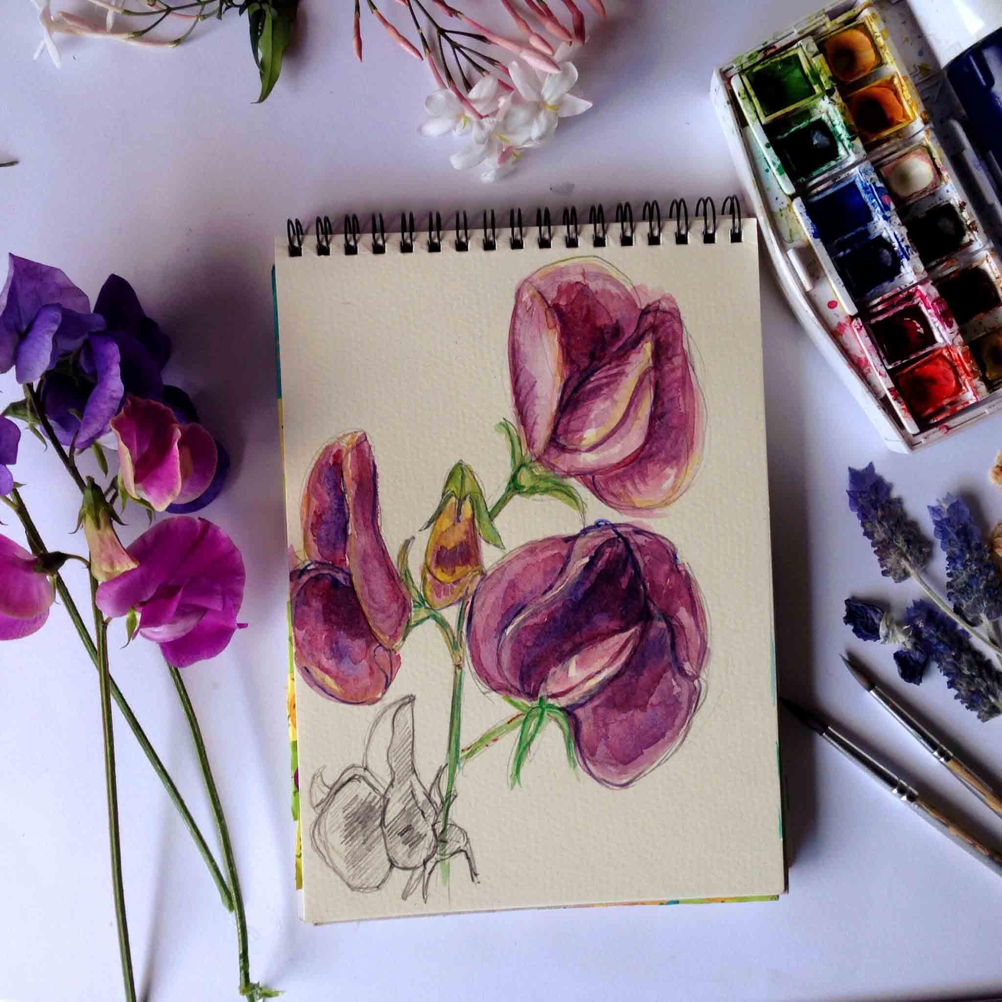 Delicious purple colours
