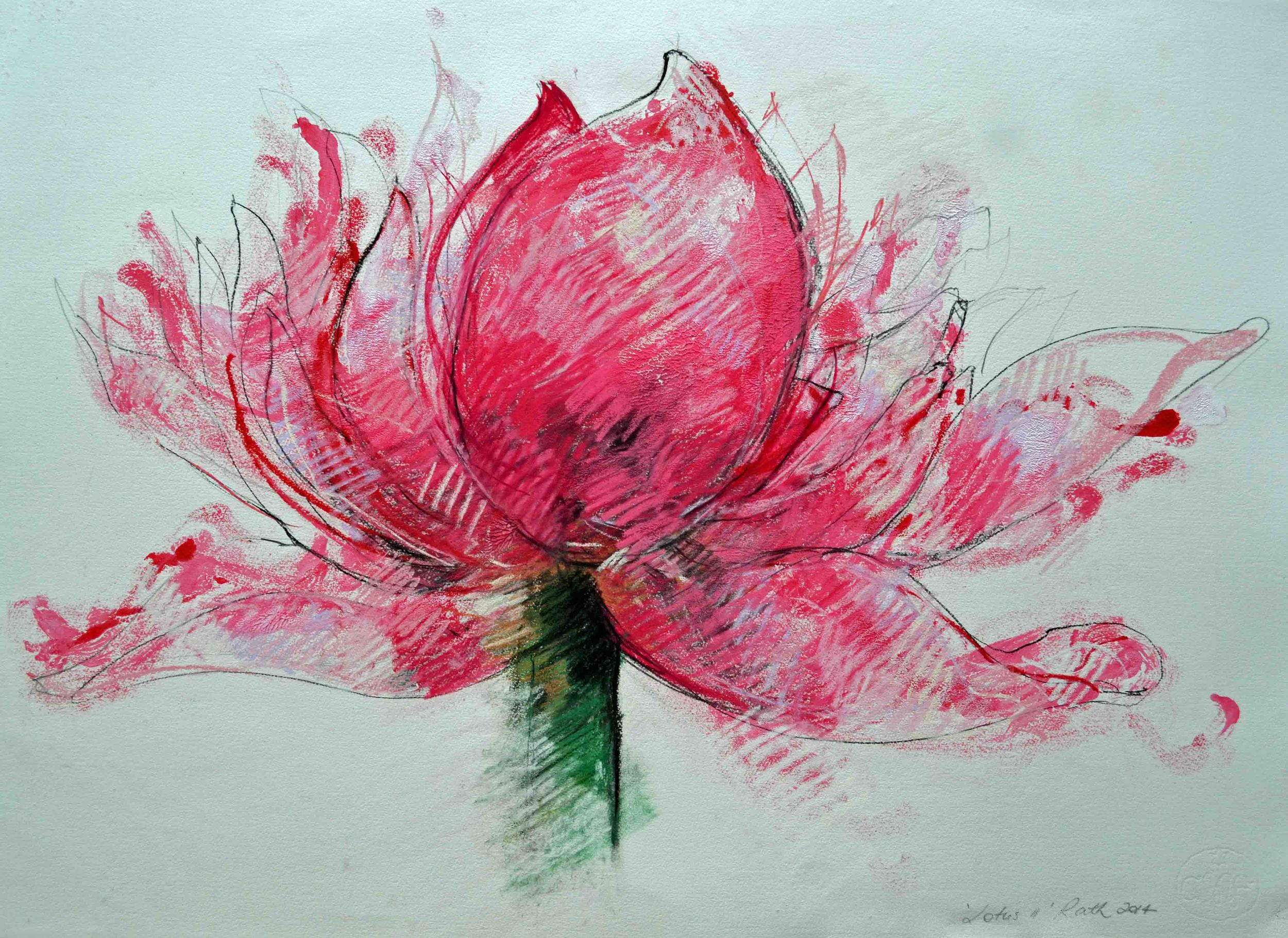 Lotus, monotype and pastel drawing, 56 x76 cm . From my 'In Season' series.