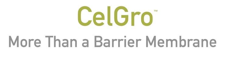 Celgro Logo 2.jpg