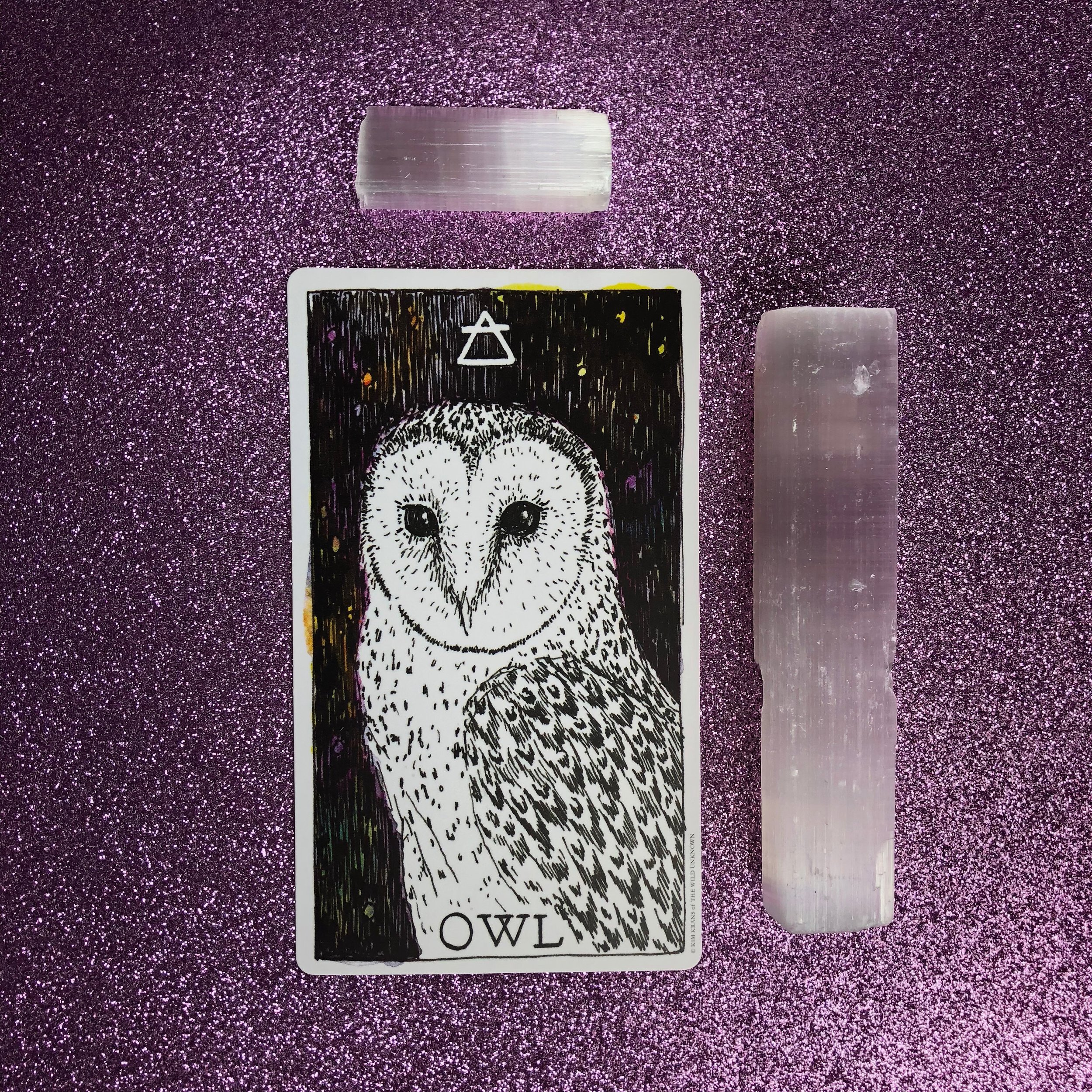 The Owl from The Wild Unknown Animal Spirit deck