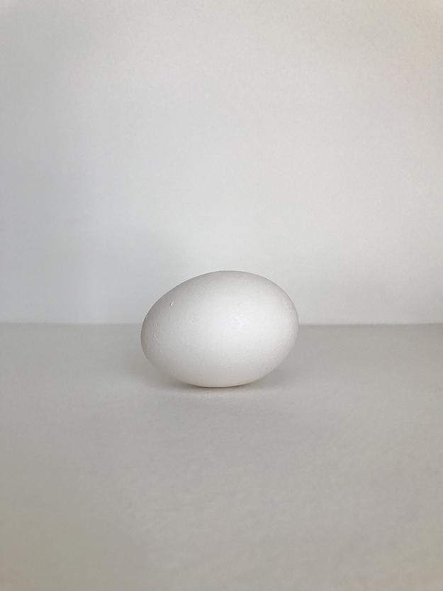 Lekha Singh – egg  – 2017 – giclée on archival paper