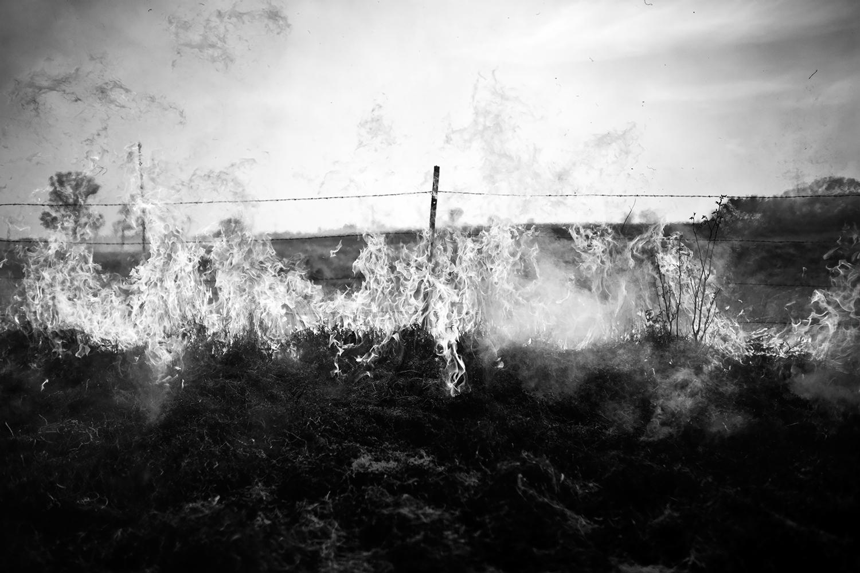 Prairie Burn, Chase County, Kansas, 2014