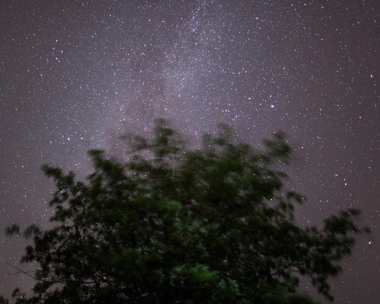 Oak and The Milky Way, Baldwin City, Kansas, 2014