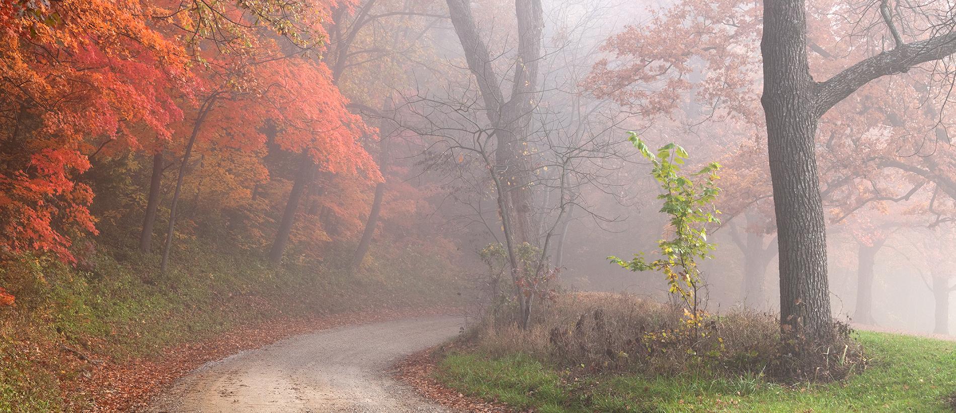 East on the Lake Road in Autumn, Baldwin City, Kansas, 2014