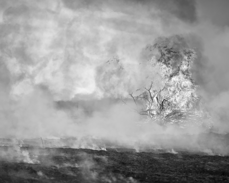Missouri Pasture Burn, Drexel, Missouri, 2017
