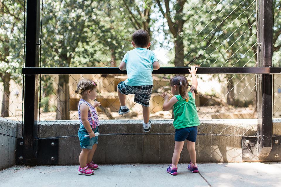 227-365 3 at the Zoo-7947.jpg