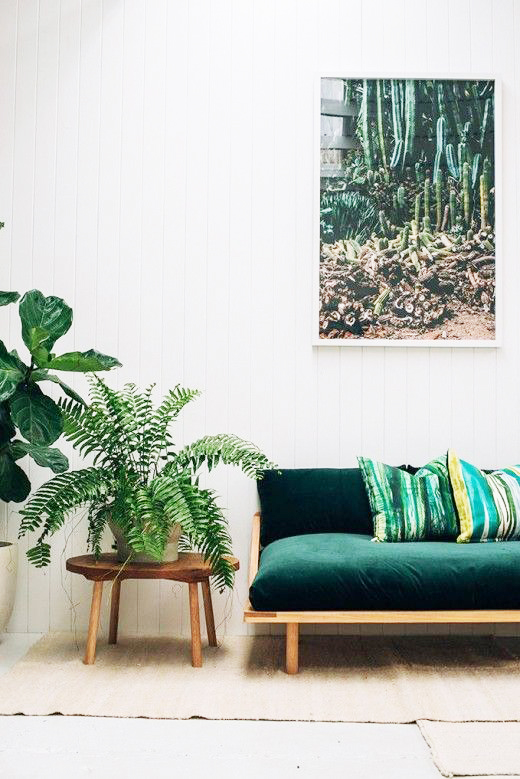 A stand alone Boston fern plant propped up on a stand, completes this living space