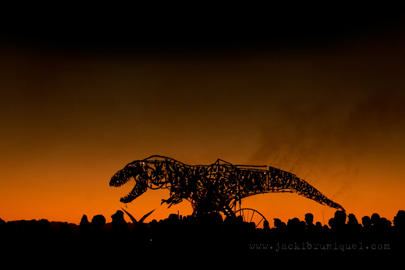Afrika-Burn-2016-Creative-South-African-Photographer-Jacki-Bruniquel-014.jpg
