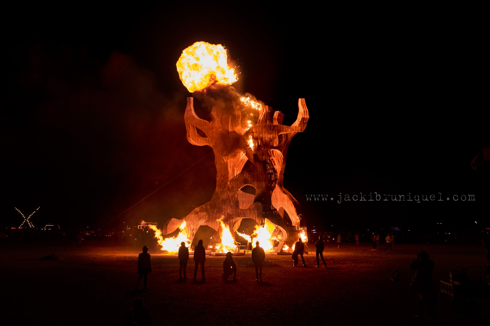 Afrika-Burn-2016-Creative-South-African-Photographer-Jacki-Bruniquel-016.jpg