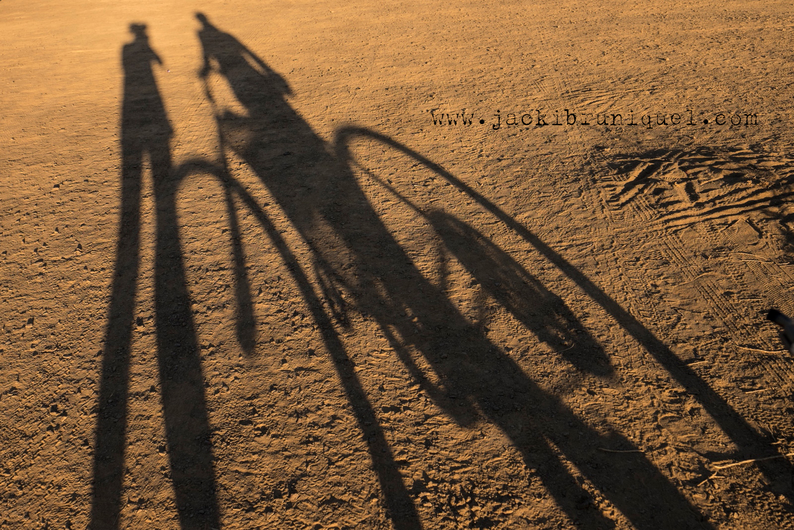 Afrika-Burn-2016-Creative-South-African-Photographer-Jacki-Bruniquel-029.jpg