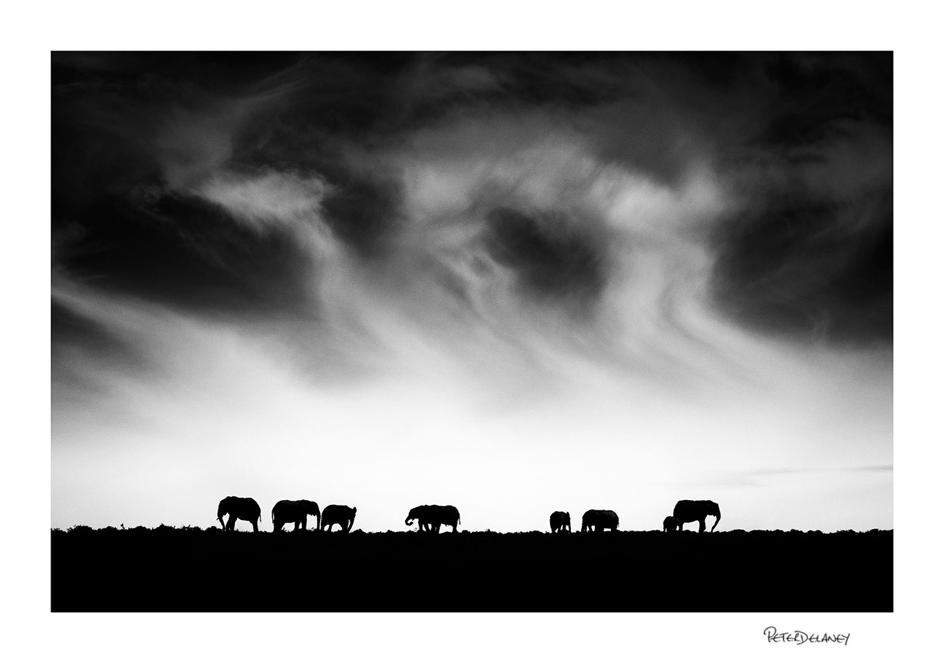 no-12-Silhoette-Elephants-clouds.jpg