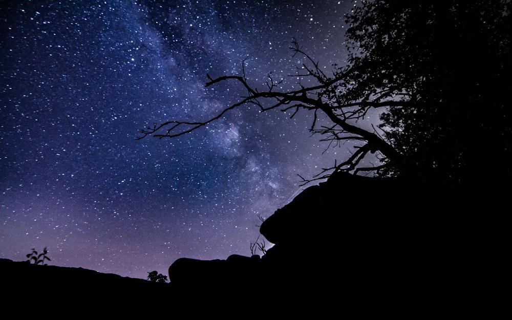 Meteor Shower night 2_3.jpg