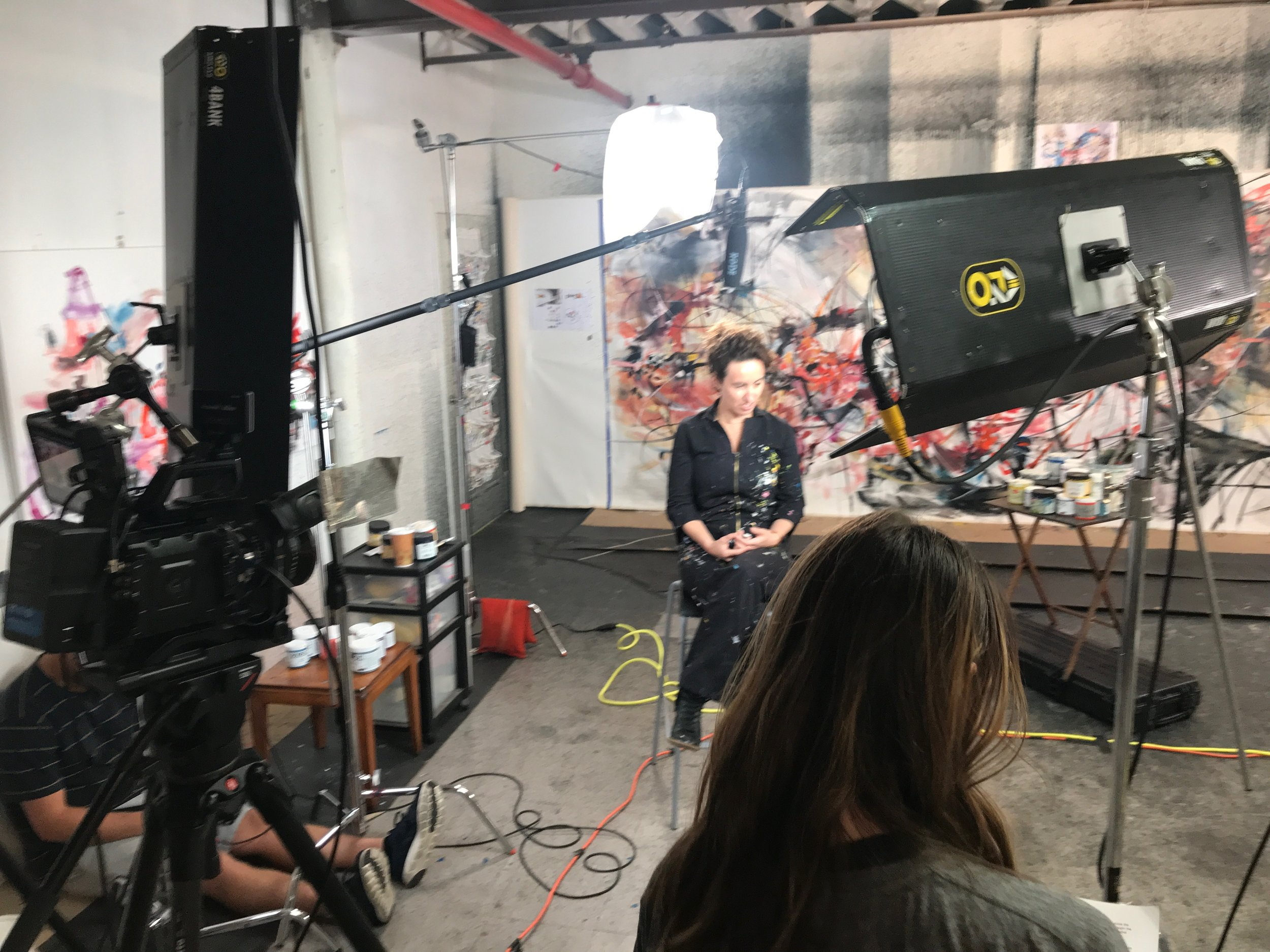 Kino Flos and Aputure LED's used in this interview setup.