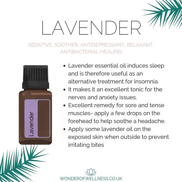Okay, so so many of you have reached out about SLEEP sand what oils are best. Well, here is your magical oil.. Lavender. ⠀⠀⠀⠀⠀⠀⠀⠀⠀ ⠀⠀⠀⠀⠀⠀⠀⠀⠀ Now, this isn't just your average high street Lavender. Oh no this is 100% pure, no nasties, beyond Organic, safe, and most importantly for results, it has all the compounds in it tested to make sure that natures done her job and they are at the right level to WORK. ⠀⠀⠀⠀⠀⠀⠀⠀⠀ ⠀⠀⠀⠀⠀⠀⠀⠀⠀ Yup that means you know what you are getting with each and every bottle as it has been tested and you can even type in the code on the bottom of the bottle to see what's in yours!⠀⠀⠀⠀⠀⠀⠀⠀⠀ ⠀⠀⠀⠀⠀⠀⠀⠀⠀ SO becuase of all of the above, this Essential Oil can be used from any age (as long as it is diluted to the right level).⠀⠀⠀⠀⠀⠀⠀⠀⠀ ⠀⠀⠀⠀⠀⠀⠀⠀⠀ DM us if you'd like to get your hands on this