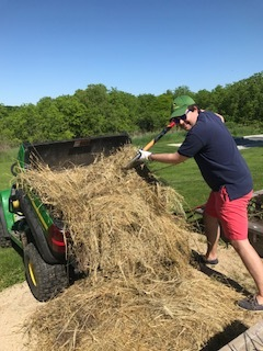 when mulching the raised beds!  A bale of this cut grass literally rolled down onto our property, getting stuck in the sumac, when neighbors were mowing last year.