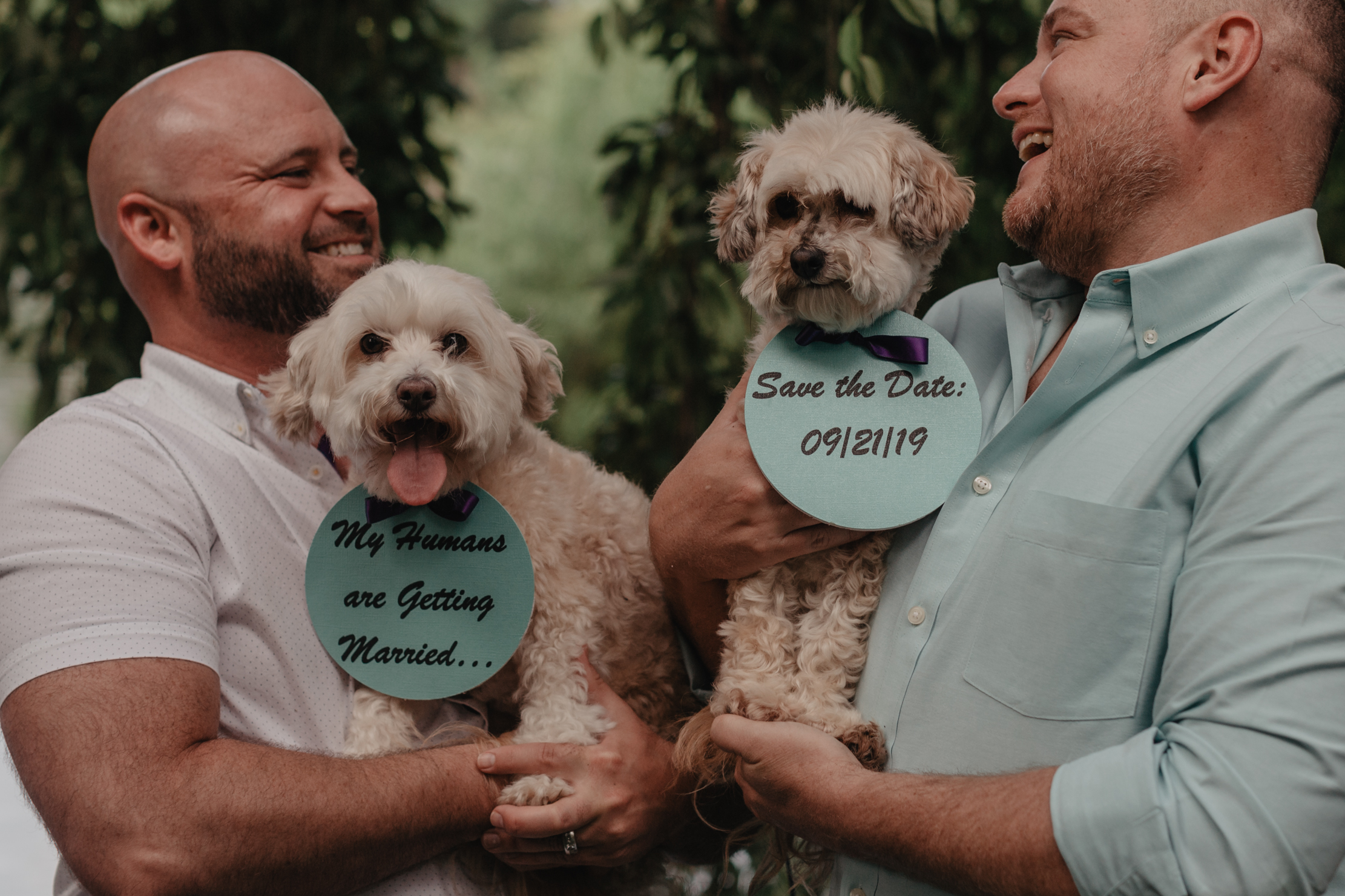 Dog Save The Dates | My Humans Are Getting Married
