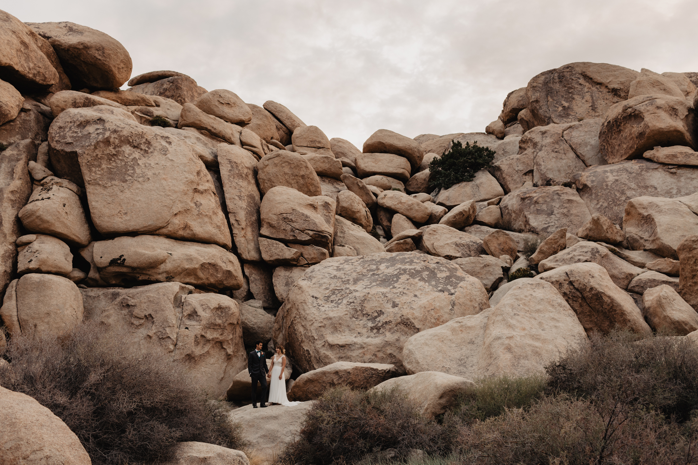 Joshua Tree Elopement | Adventure Wedding Photographer