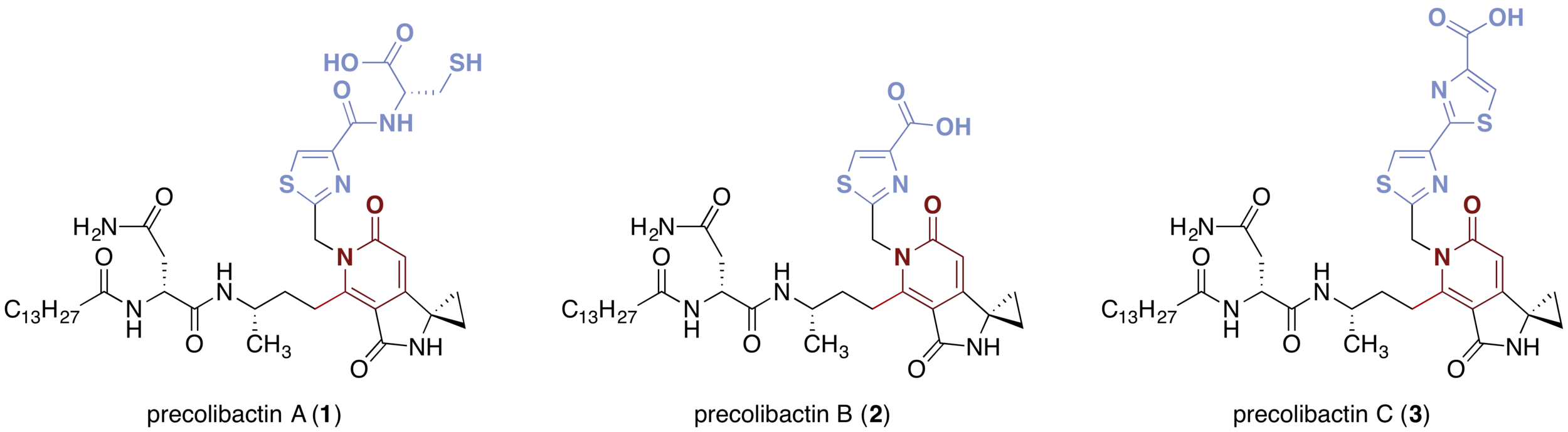 Fig. 1.  Structures of precolibactins A–C ( 1 – 3 ).