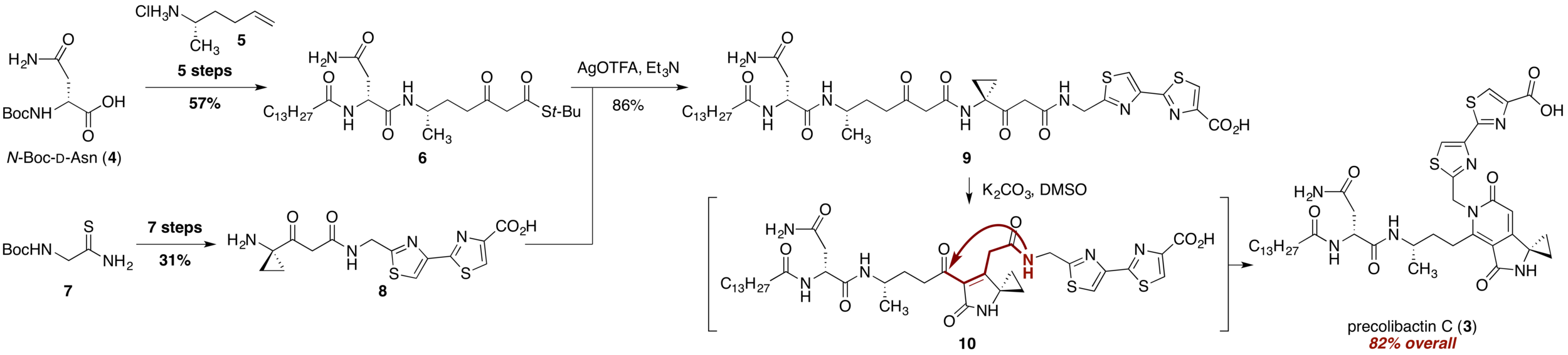 Fig. 2.  Synthesis of precolibactin C ( 3 ).