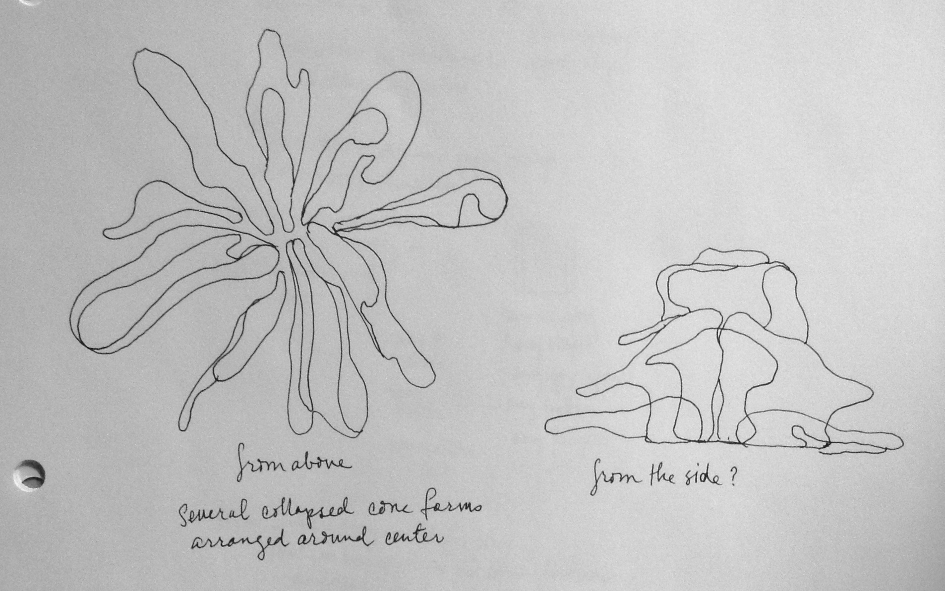 Drawing of sculptural application using several slip forms made in the manner discussed. Coral reef? Flower? Surely, nothing that was man-made.