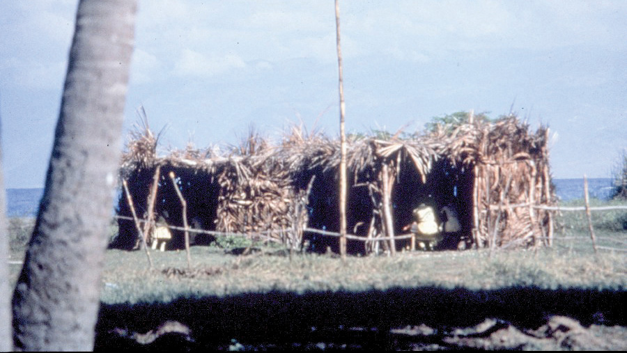 Our first school opened with 151 children meeting in thatched rooms made of woven palm leaves.