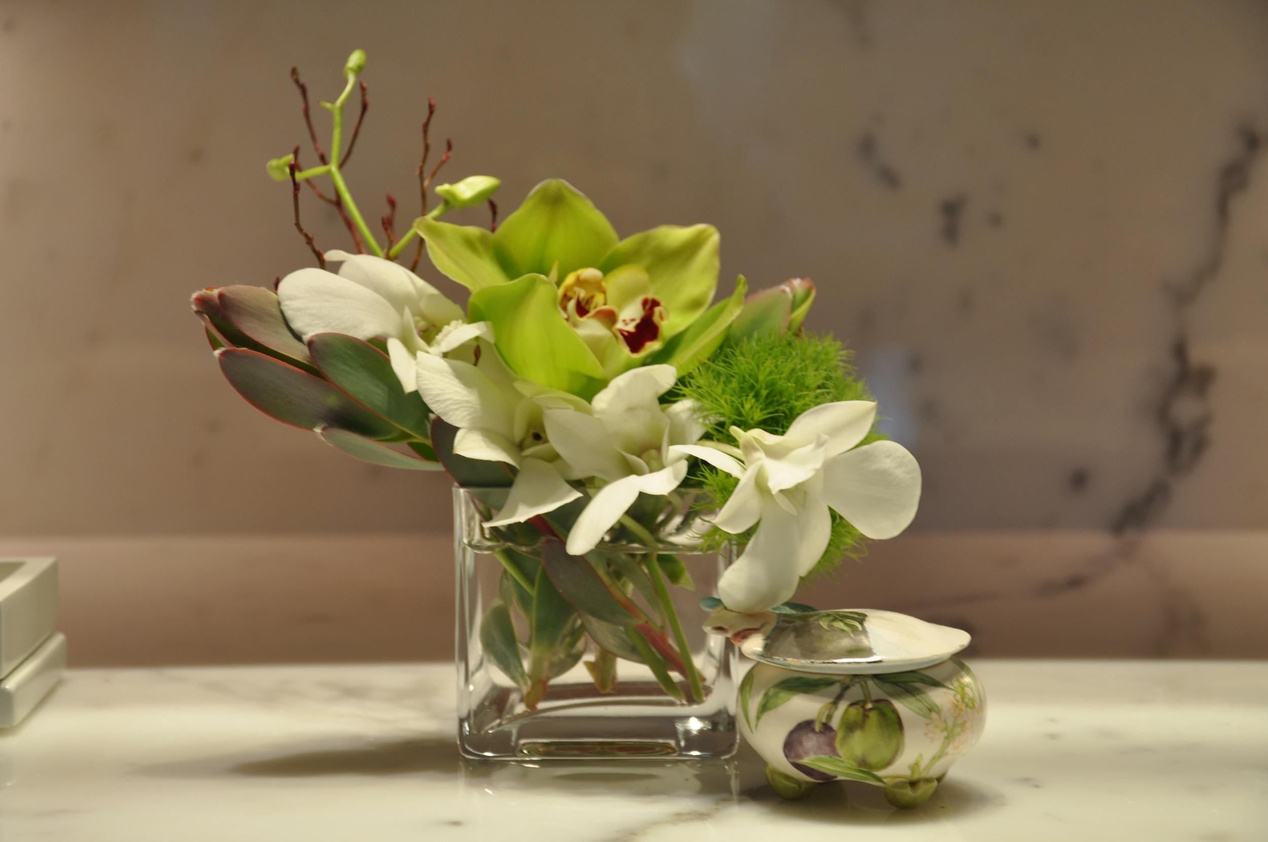 white dendrobium and green cymbidium orchids