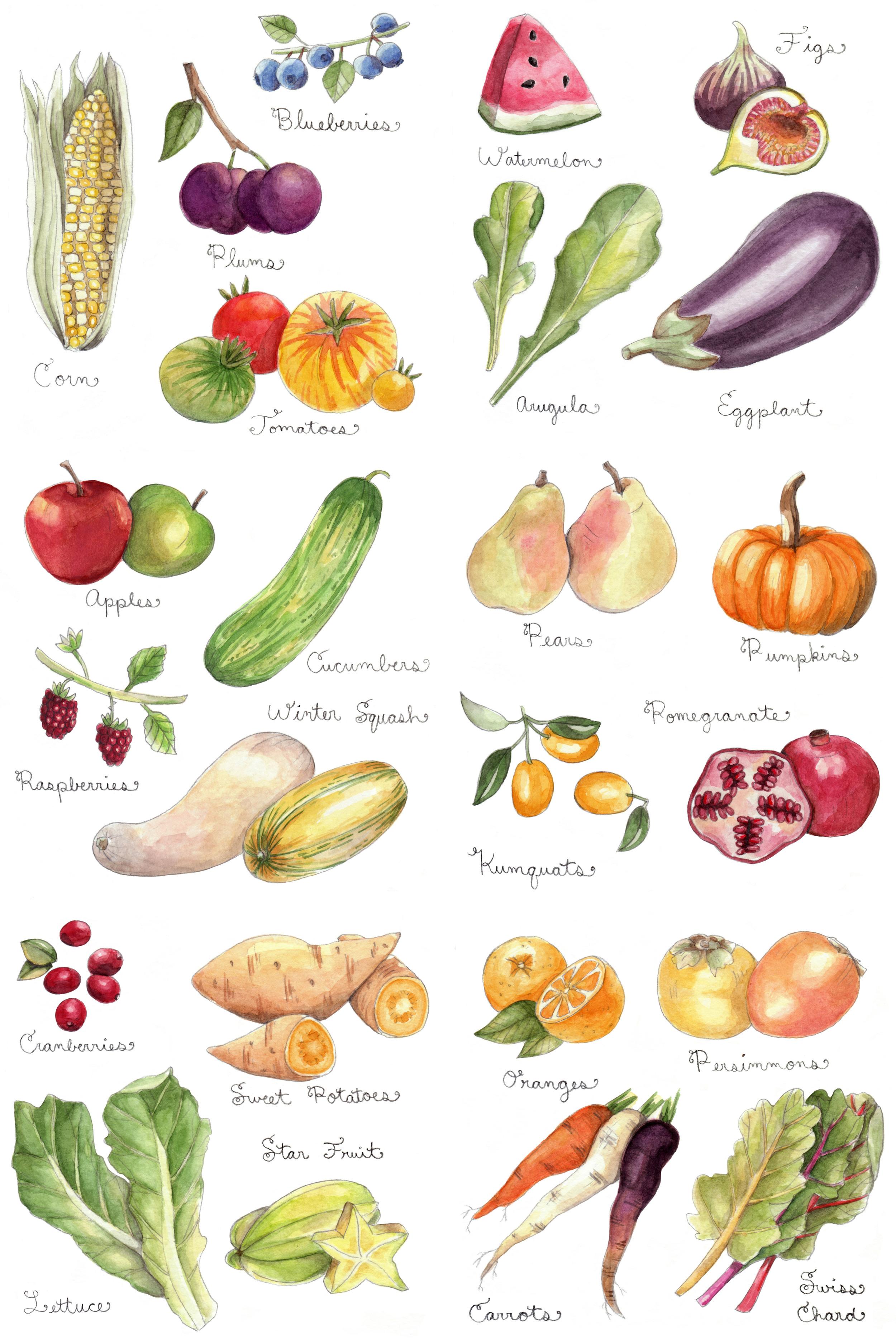 veggieprint.jpg