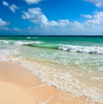 Blog.Ocean.Vera.png