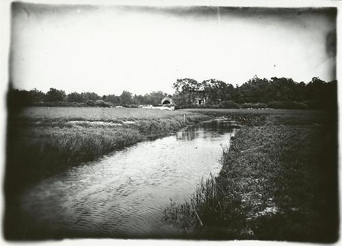 Hal B. Fullerton. 1899. Cranberry bog and drain in Calverton, Suffolk County, NY. Gelatin silver print, part of the  Empire State Digital Network  accessed via the Digital Public Library of America.All of the materials found through DPLA—photographs, books, maps, news footage, oral histories, personal letters, museum objects, artwork, government documents, and so much more—are free and immediately available in digital format.