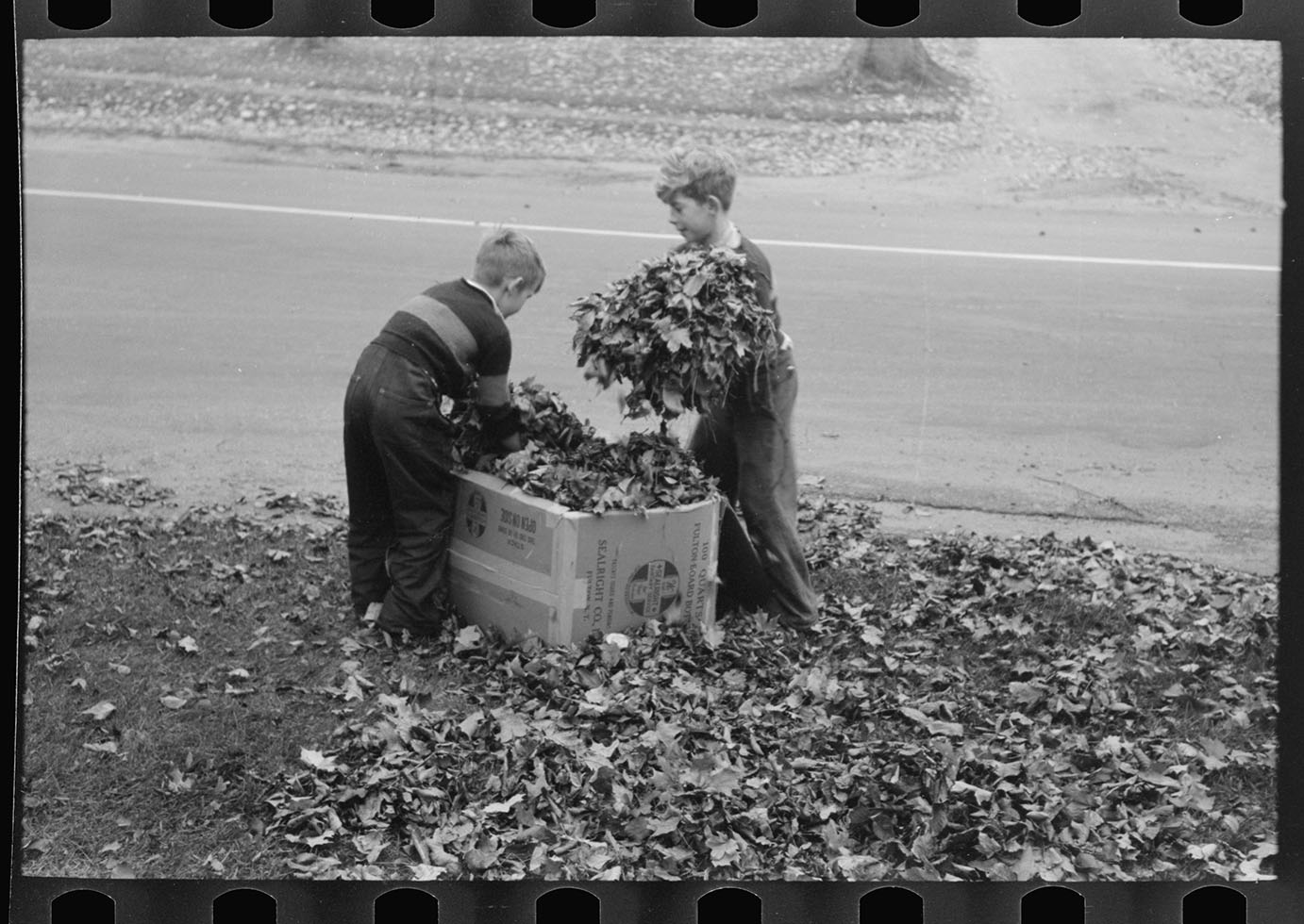 Boys gathering leaves, front lawn in Bradford, Vermont, October 1939. Photograph by Lee Russell, courtesy Office of War Information, Library of Congress.