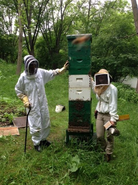 Granddad's Hive