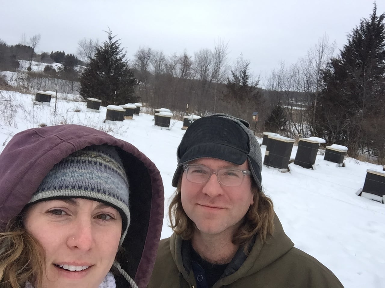 Winter hive check 2016