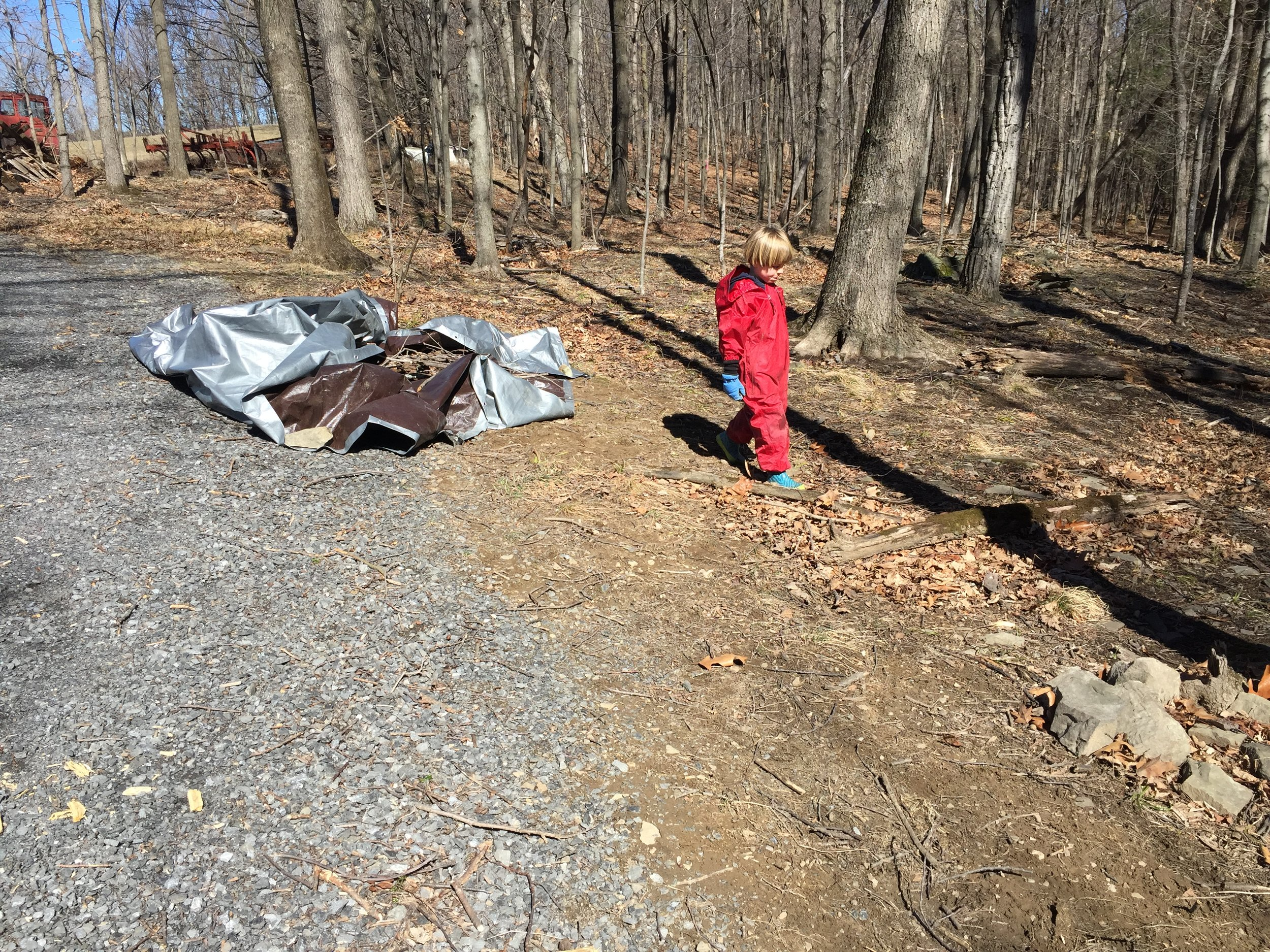 In just a short time we had filled the tarp with twigs.