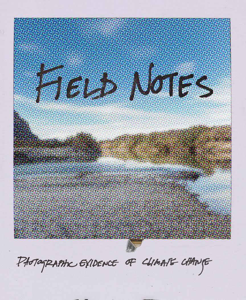 field notes_web.jpg
