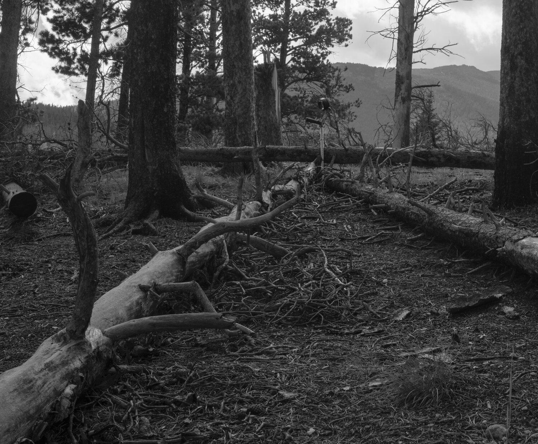 Crutch_Rocky_Mountain_SpragueLake-1-0281.jpg