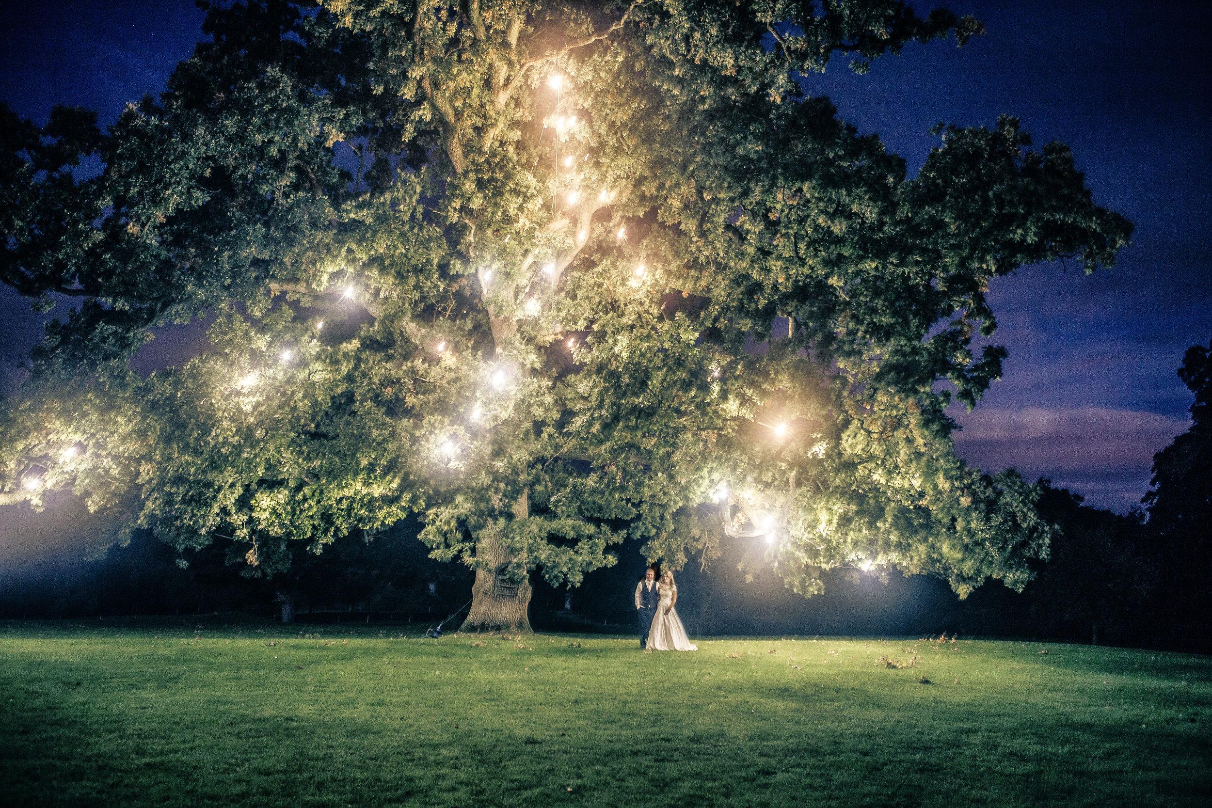 Breeda & Ed tree-1.jpg