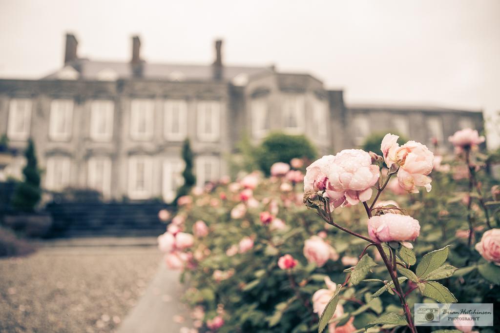 C&L Castle Durrow-70.jpg