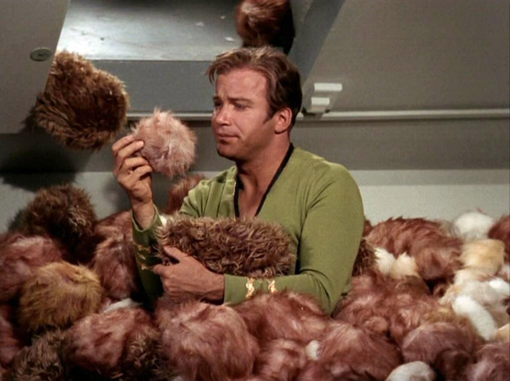 The Lovely Cicada | Star Trek's 50th Anniversary
