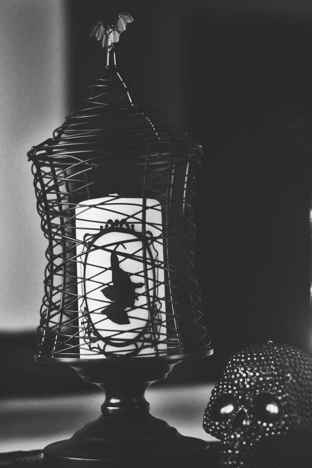 The Lovely Cicada | Halloween Haul