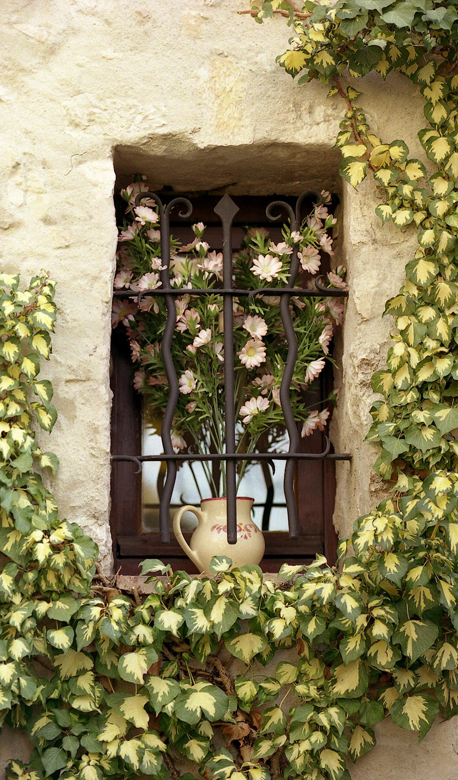 Eze Window