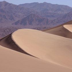 The Dunes at Mesquite Flat