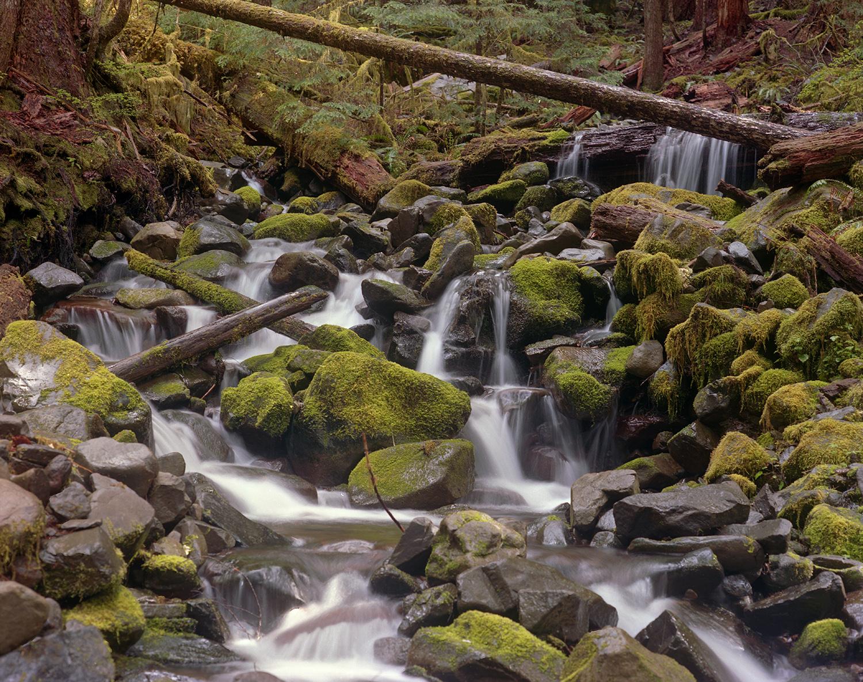 Sol Duc Stream