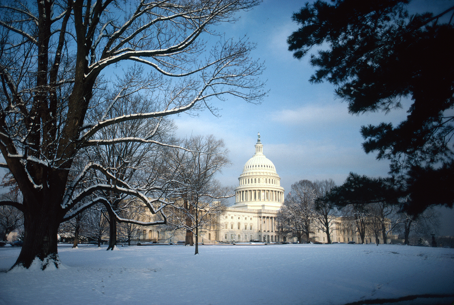 The Capitol in Snow