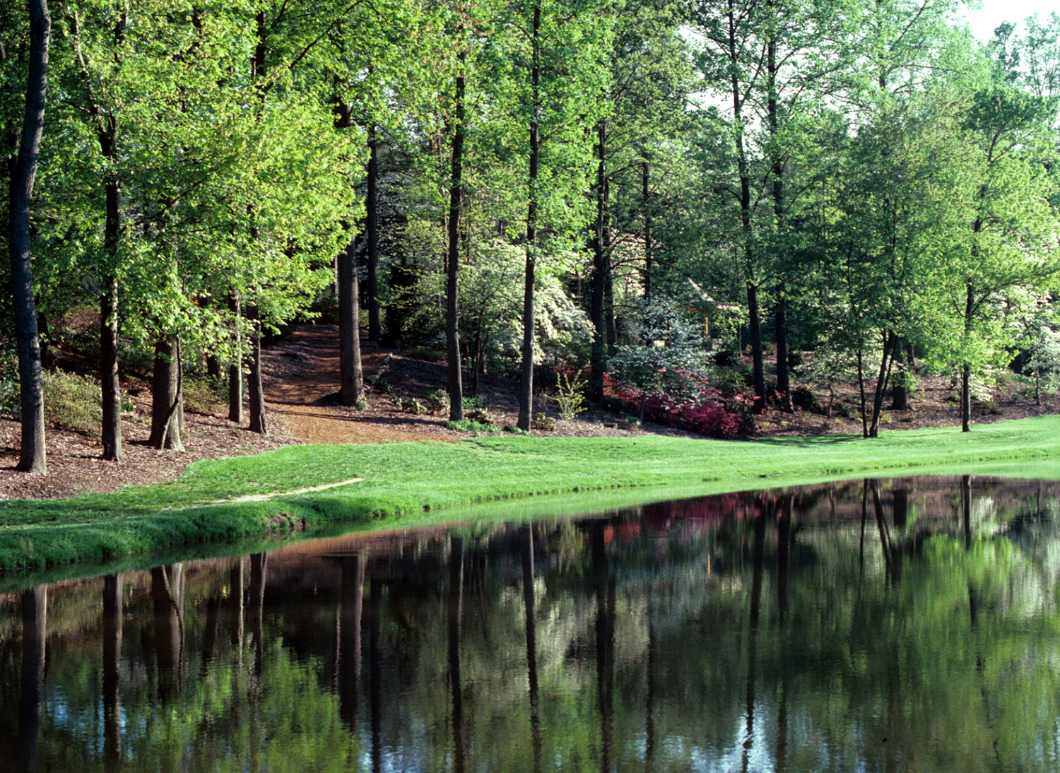 The Pond at Brookside